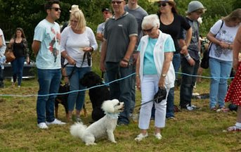 Dogshow at the village fete
